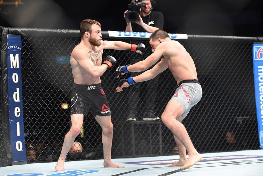 MMA jangchisi o'zini-o'zi nokaut qilib qo'ydi (video)