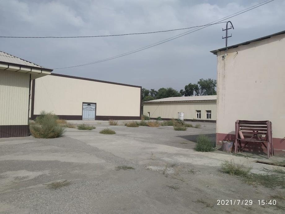 В Андижане выставили на продажу крупное предприятие по производству шелкового волокна
